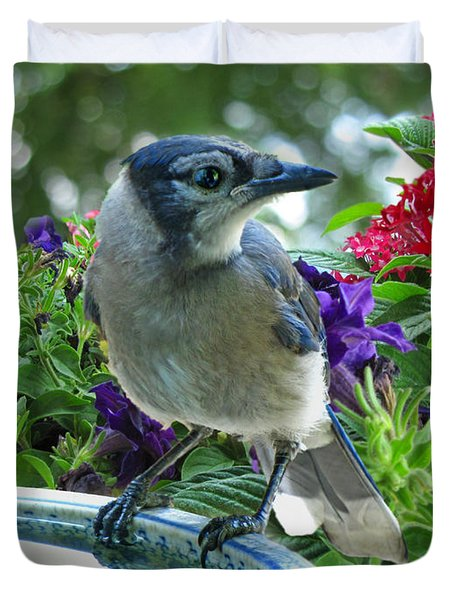 Duvet Cover featuring the photograph Blue Jay At Water by Debbie Portwood
