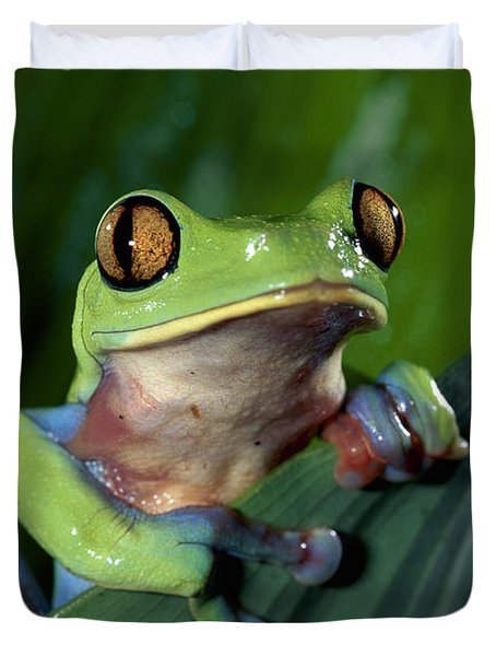 Blue-sided Leaf Frog Agalychnis Annae Duvet Cover by Michael & Patricia Fogden