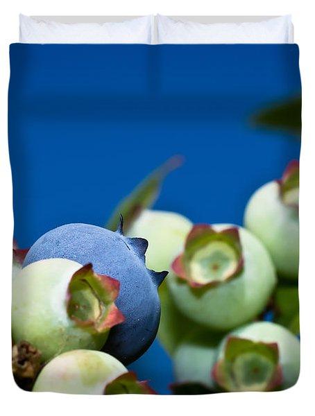 Blueberries And Sky Duvet Cover