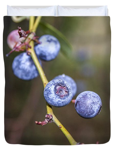 Duvet Cover featuring the photograph Blueberry by Ester  Rogers