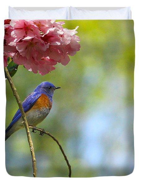 Bluebird In Cherry Tree Duvet Cover