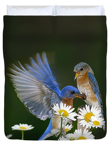 Duvet Cover featuring the photograph Bluebirds Picnicking In The Daisies by Randall Branham
