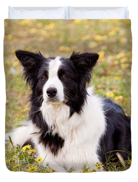 Border Collie In Field Of Yellow Flowers Duvet Cover