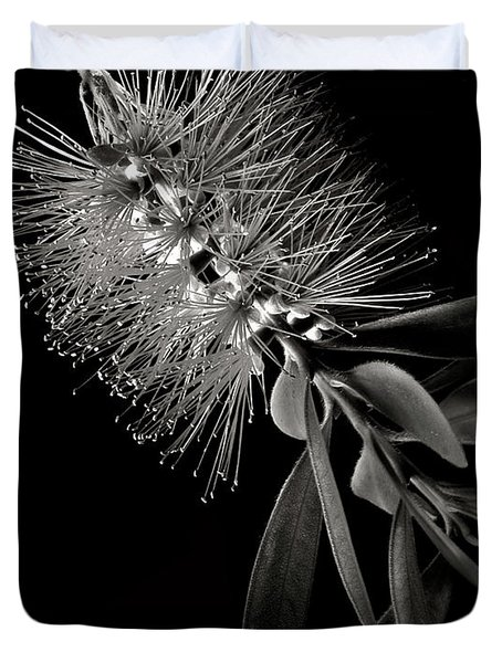 Bottlebrush In Black And White Duvet Cover