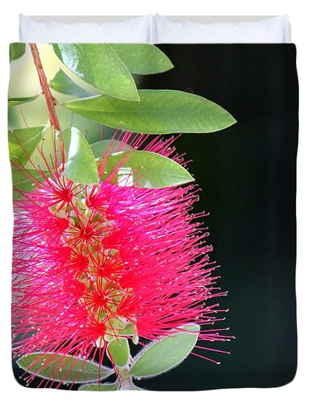 Bottlebrush Nectar Duvet Cover