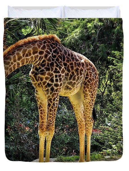 Bowing Giraffe Duvet Cover by Mariola Bitner