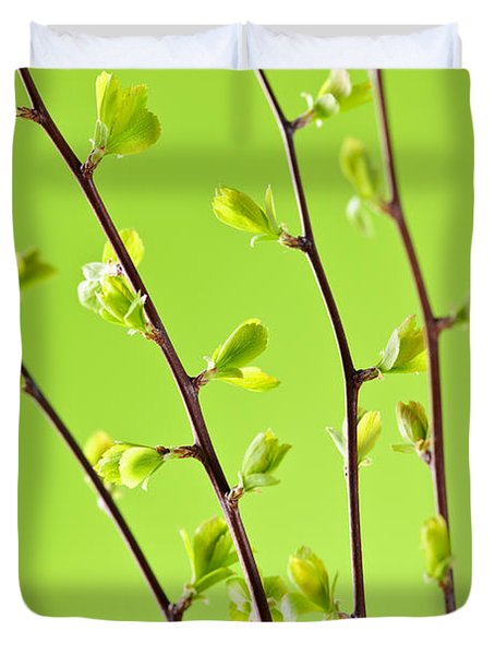Branches With Green Spring Leaves Duvet Cover by Elena Elisseeva
