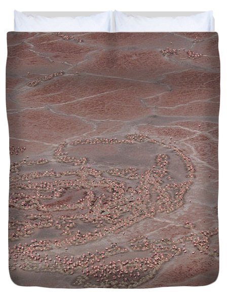 Breeding Colonies Of Flamingos Duvet Cover by Gregory G. Dimijian