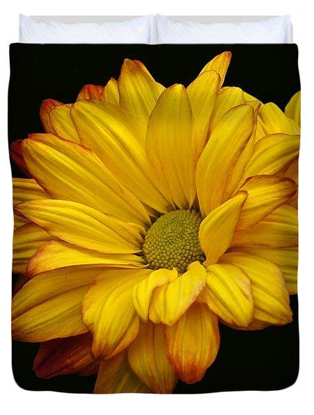 Bright And Brassy Duvet Cover
