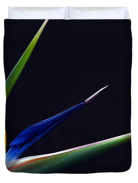 Bright Bird Of Paradise Rectangle Frame Duvet Cover