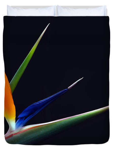 Bright Bird Of Paradise Square Frame Duvet Cover