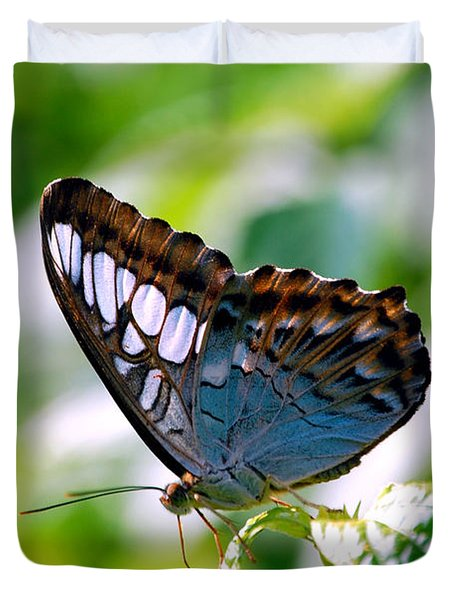 Duvet Cover featuring the photograph Bright Blue Butterfly by Peggy Franz