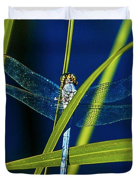 Brilliant Dragon Fly Duvet Cover