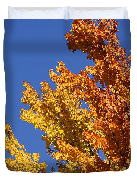 Brilliant Fall Color And Deep Blue Sky Duvet Cover by Mick Anderson