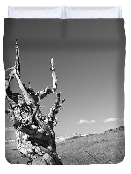 Bristlecone Pine And Cloud Duvet Cover