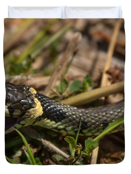 British Grass Snake Duvet Cover
