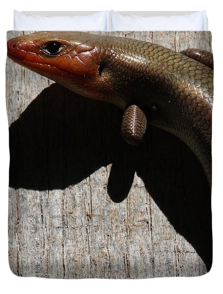 Broad-headed Skink On Barn  Duvet Cover