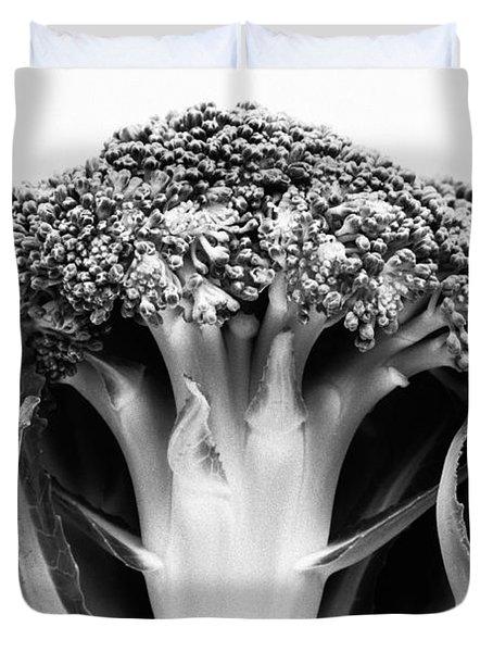 Broccoli On White Background Duvet Cover by Gaspar Avila