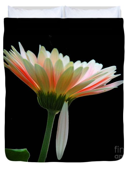 Duvet Cover featuring the photograph Broken Daisy by Cindy Manero