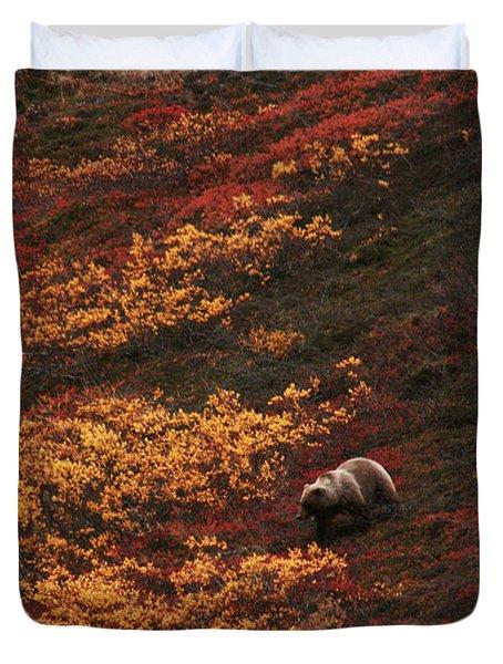 Brown Bear Denali National Park Duvet Cover
