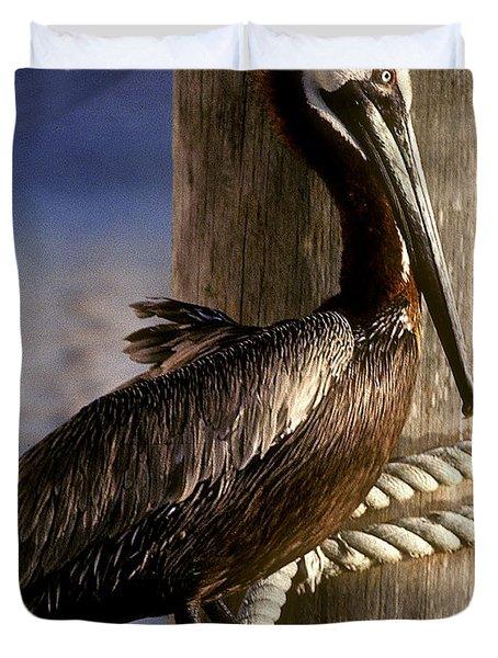 Brown Pelican In Key West 9l Duvet Cover by Gerry Gantt