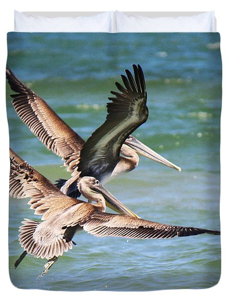 Brown Pelicans Taking Flight Duvet Cover