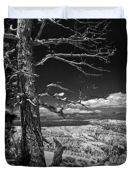 Bryce Canyon - Dead Tree Black And White Duvet Cover