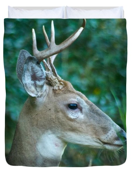 Buck Profile 9634 Duvet Cover by Michael Peychich