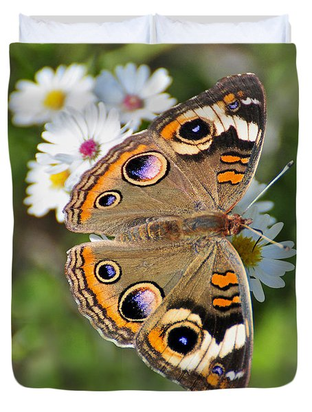 Buckeye Butterfly Duvet Cover by Rodney Campbell