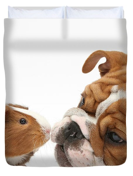 Bulldog Pup Face-to-face With Guinea Pig Duvet Cover by Mark Taylor
