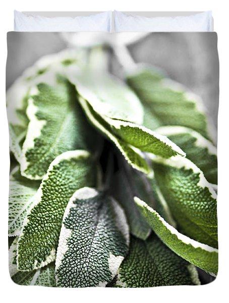 Bunch Of Fresh Sage Duvet Cover by Elena Elisseeva