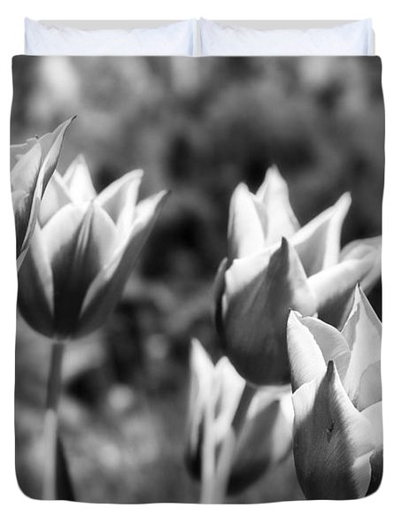 Burgundy Yellow Tulips In Black And White Duvet Cover by James BO  Insogna