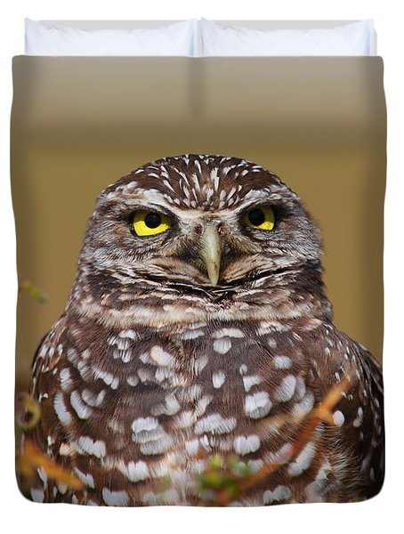 Burrowing Owl II Duvet Cover by Bruce J Robinson
