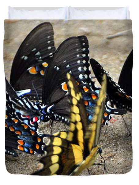 Butterfles And More Butterflies Duvet Cover by Marty Koch