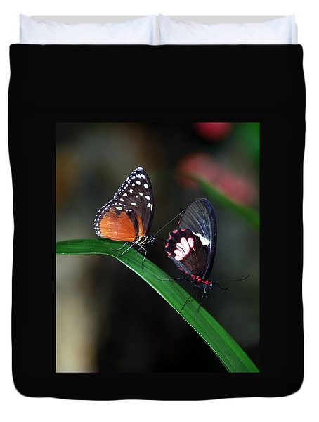 Butterflies Duvet Cover by Skip Willits