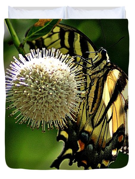 Butterfly 3 Duvet Cover by Joe Faherty