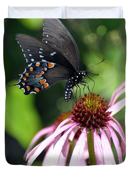 Butterfly And Coine Flower Duvet Cover by Marty Koch