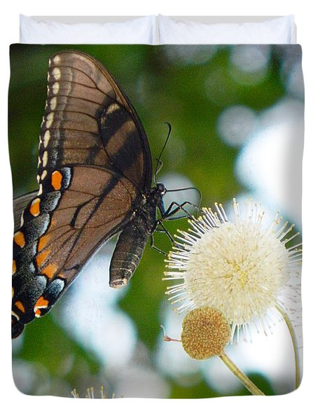 Duvet Cover featuring the photograph Butterfly by Ester  Rogers