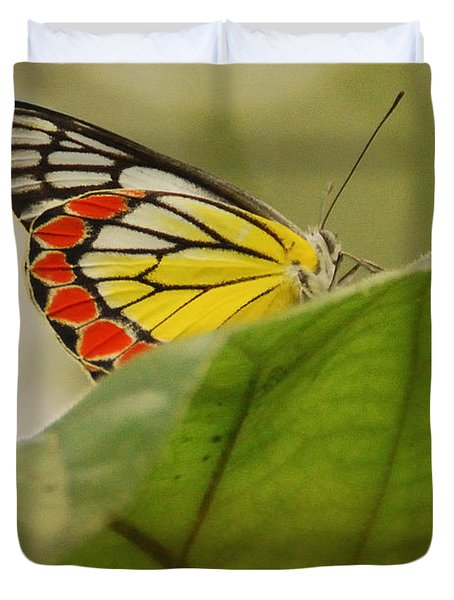 Duvet Cover featuring the photograph Butterfly Resting by Fotosas Photography