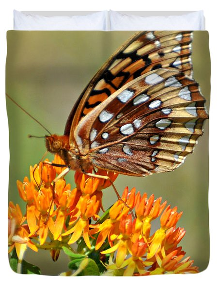 Butterfly Weed 1 Duvet Cover by Marty Koch