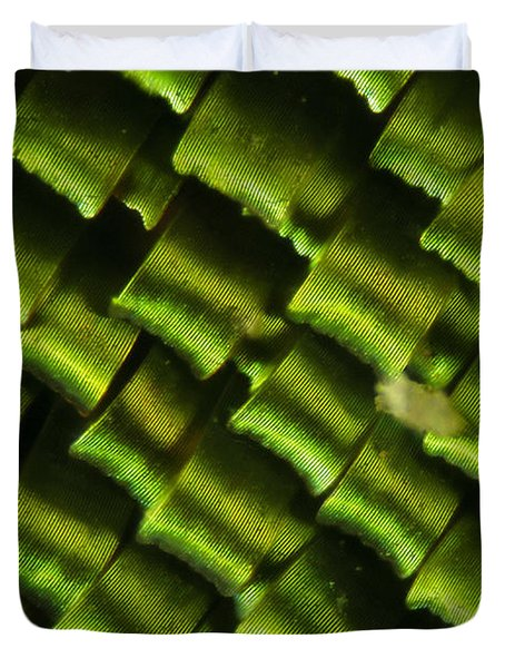 Butterfly Wing Scales Duvet Cover by Raul Gonzalez Perez