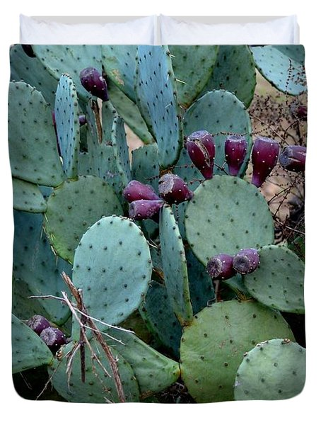 Duvet Cover featuring the photograph Cactus Plants by Maria Urso