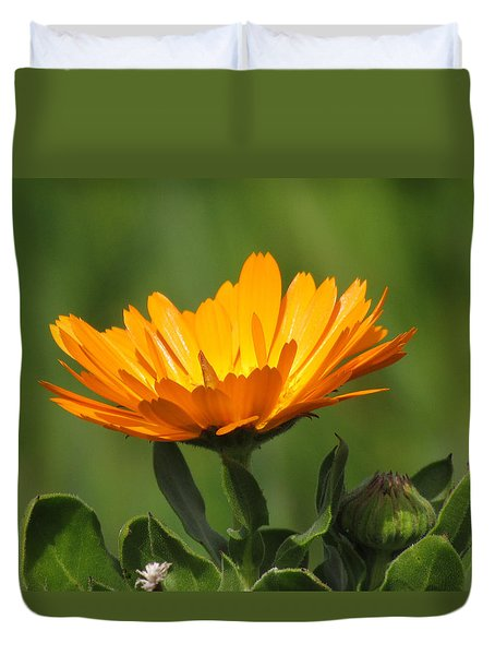 Duvet Cover featuring the photograph Calendula Bloom by Bonnie Muir
