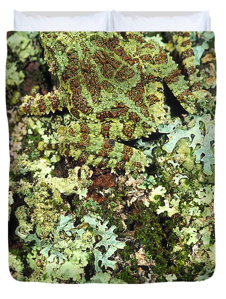Camouflaged Vietnamese Mossy Tree Frog Duvet Cover by John Pitcher