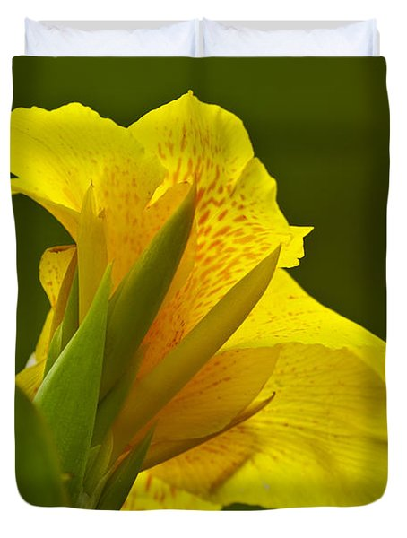 Canna Lily Duvet Cover by Heiko Koehrer-Wagner