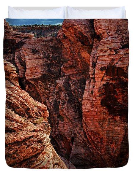 Canyon Glow Duvet Cover by Rick Berk
