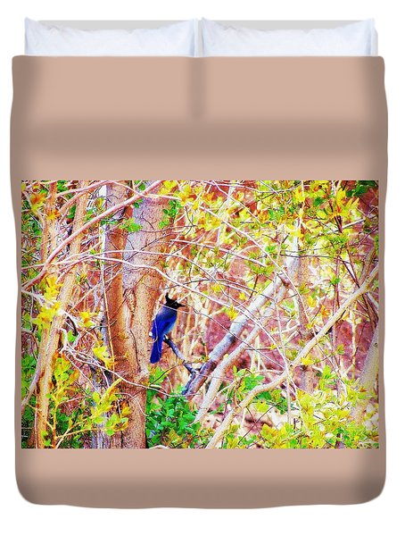 Canyon Jay  Duvet Cover by Clarice  Lakota