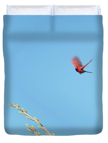 Cardinal In Full Flight Digital Art Duvet Cover by Thomas Woolworth