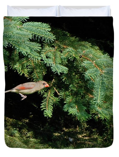 Duvet Cover featuring the photograph Cardinal Just A Hop Away by Thomas Woolworth