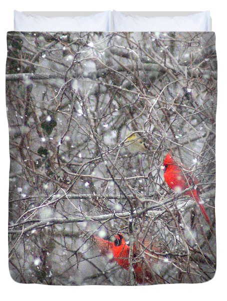 Cardinals In The Snow Duvet Cover